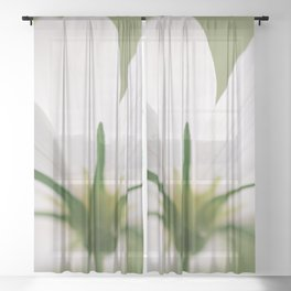 Bloom When You Want - Flower Photography Sheer Curtain