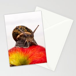 A common snail crawls on a red apple Stationery Cards
