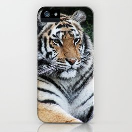 The jewel of the jungle iPhone Case