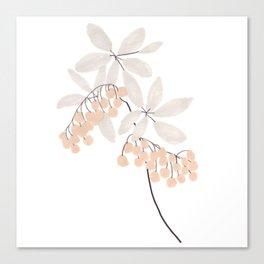 Enkianthus Flower Canvas Print