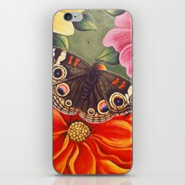 Common Buckeye Butterfly iPhone Skin