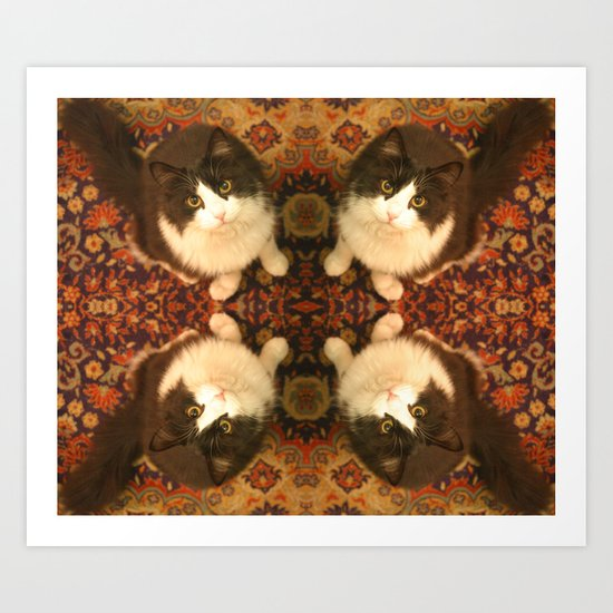 Shchuka, kaleidoscopic cat Art Print