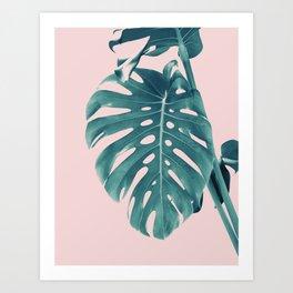 Monstera Delight #3 #tropical #decor #art #society6 Art Print