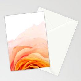 Light Orange Rose Stationery Cards