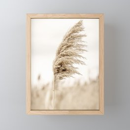 Pampas Grass Framed Mini Art Print