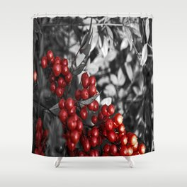 Passion Fruit. Shower Curtain