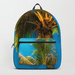 Sunlight Strikes the Coconut Palm Backpack