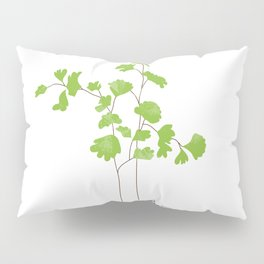 Maidenhair Fern Illustration Botanical Print Pillow Sham