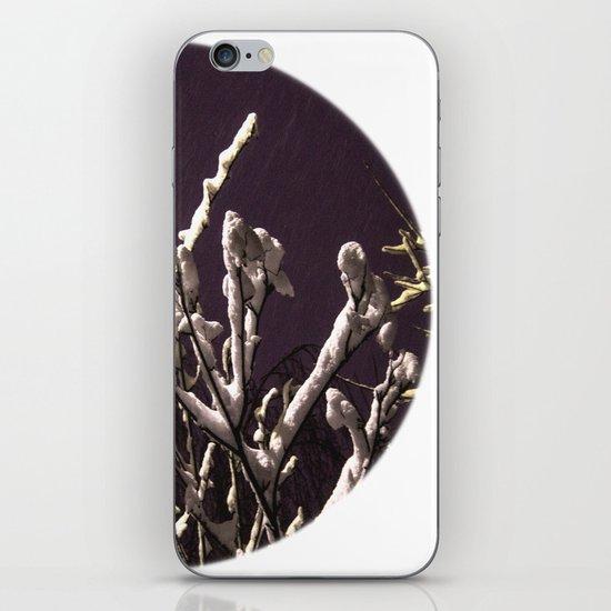 Saying goodbye to winter iPhone Skin