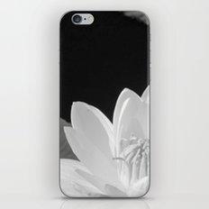 Black & White Lilypad iPhone & iPod Skin