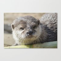 otter Canvas Prints featuring Otter by PICSL8