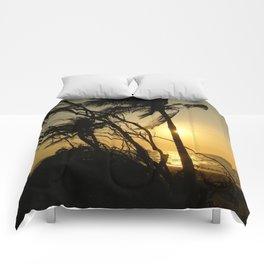 Hidden Paradise Comforters