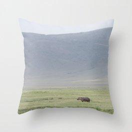 Hippo, please Throw Pillow