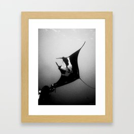 Evading Devil Fish Framed Art Print