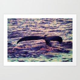 Water Sunset 1 Art Print