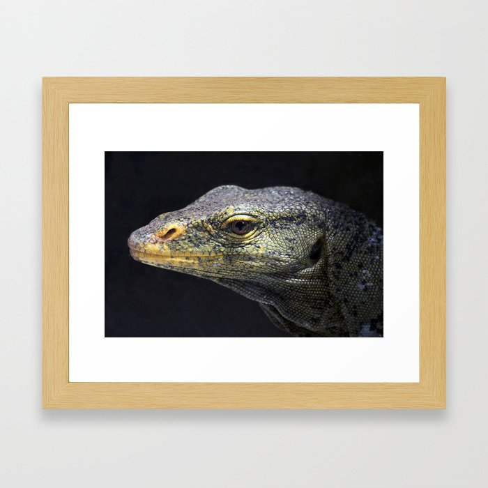 Monster Monitor Framed Art Print