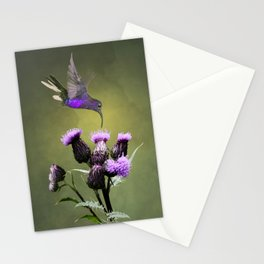 Violet Sabrewing Hummingbird and Thistle Stationery Cards