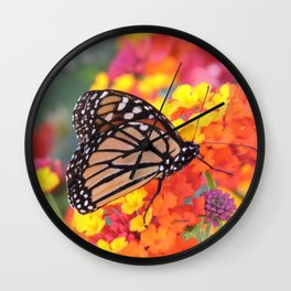 Monarch Feeding on Lantana Wall Clock