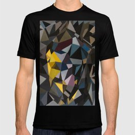 Without an object  T-shirt