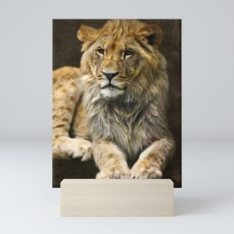 The young lion Mini Art Print
