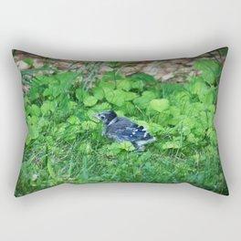 Baby Bluejay Bird Color Photo Rectangular Pillow