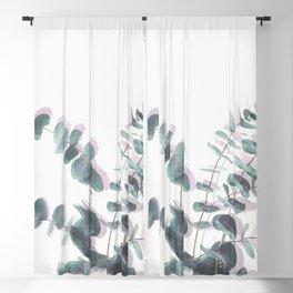 Eucalyptus Shadows II Blackout Curtain