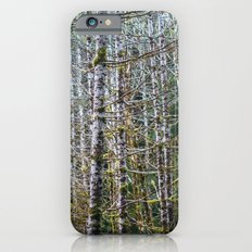 Trees: I // Oregon Slim Case iPhone 6s
