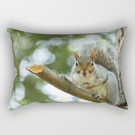 A wild squirel captured in a cold sunny autumn day Rectangular Pillow