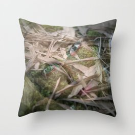 Girl Of The Earth Throw Pillow