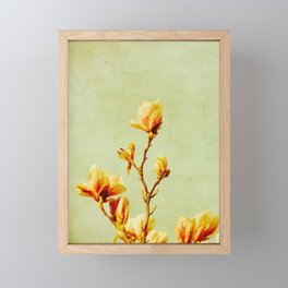 wednesday's magnolias Framed Mini Art Print
