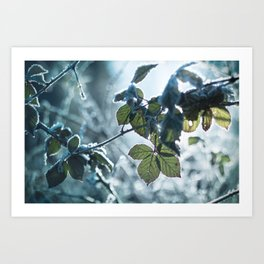 Freezing over Art Print