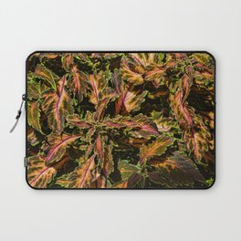 Coleus Foliage Laptop Sleeve