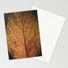 little memory - Fallen  Stationery Cards