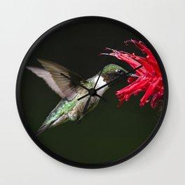 Hummingbird XV Wall Clock