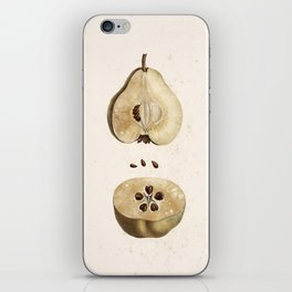 Pear Disection Botanical Illustration iPhone Skin