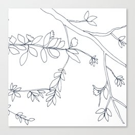 Branches and Leaves, Drawing Canvas Print