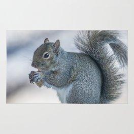 Winter squirrel Rug