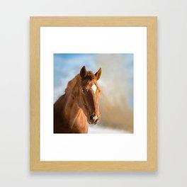 Brown Horse Winter Sky Framed Art Print