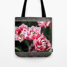 Double Late Peony-Flowered Tulip named Horizon Tote Bag
