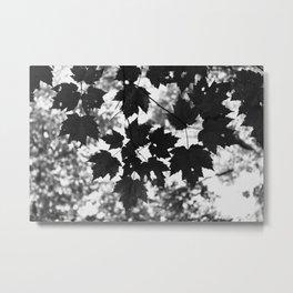 Leaves grow old gracefully Metal Print
