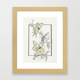 Life-Cycle Study: Butterfly Framed Art Print