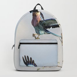 Lilac Breasted Roller Backpack