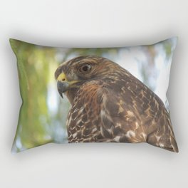 Young Red-Shouldered Hawk in a Desert Willow Rectangular Pillow
