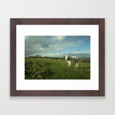 East Somerset Bullock Framed Art Print