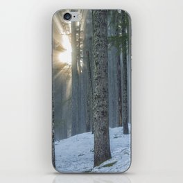 Woods on a Winter's Day iPhone Skin
