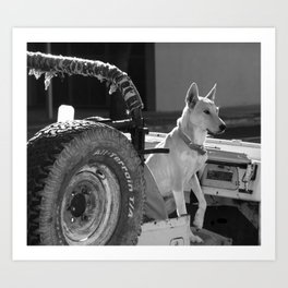 Jeep Dog Art Print