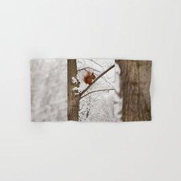 Squirrel sitting on twig in snow Hand & Bath Towel