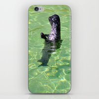 seal iPhone & iPod Skins featuring seal by  Agostino Lo Coco