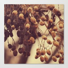 Autumn life Canvas Print