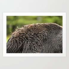 Wet Fur Art Print